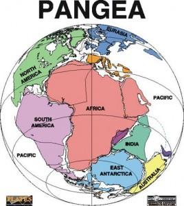 Continentul Pangeea, acolo unde Africa si America de Sud erau unite